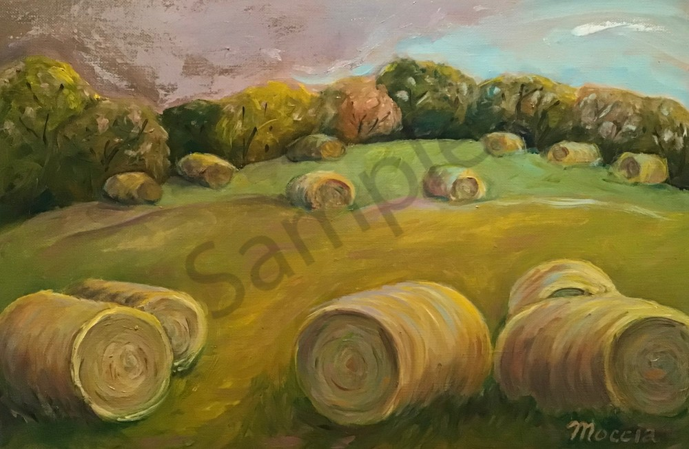 Hartsburg Hay Bales Art | Wild Ponies creations