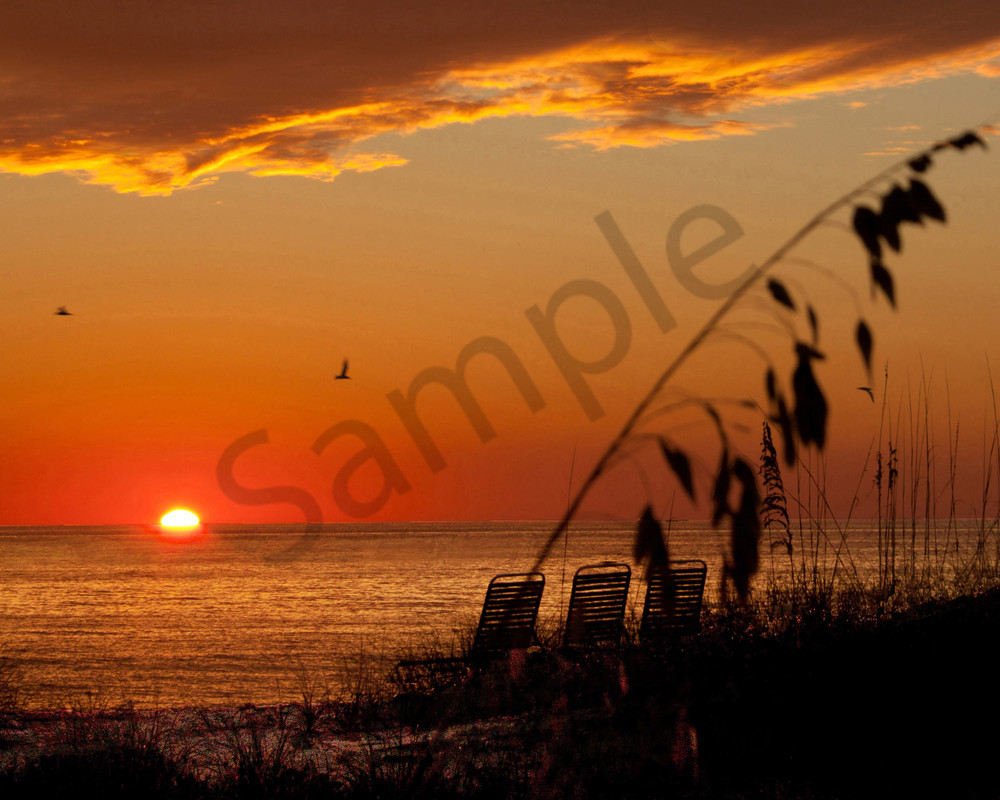 Private Beach Photography Art   It's Your World - Enjoy!