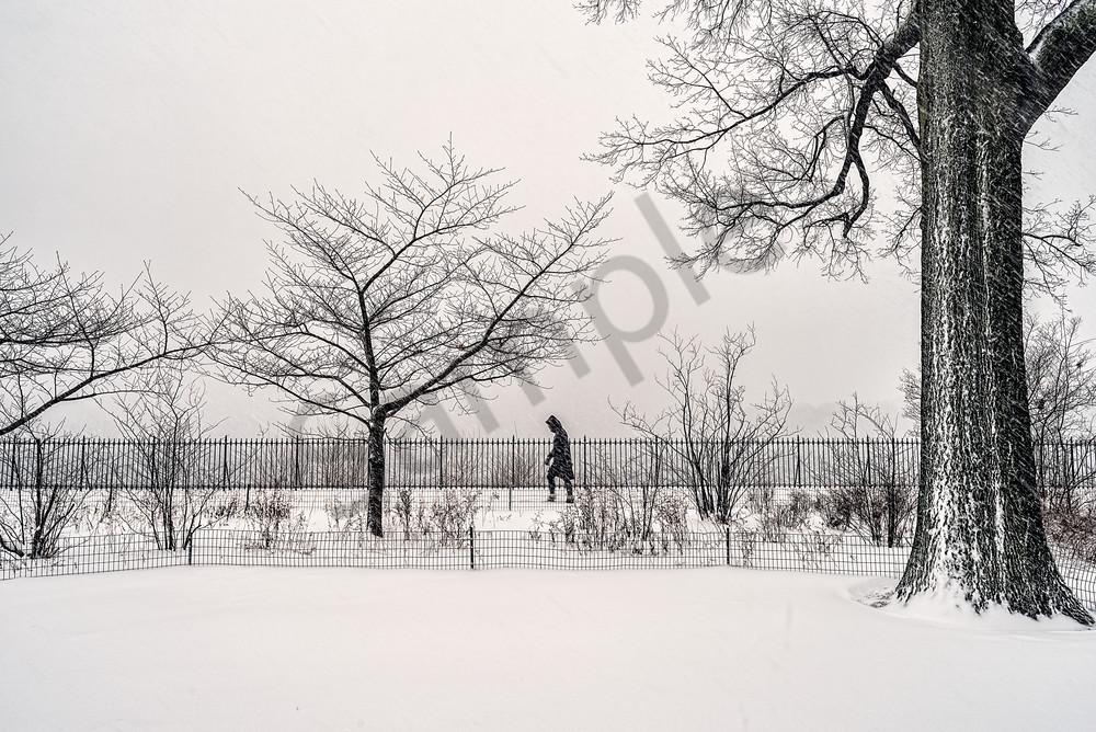 Person walking through winter landscape
