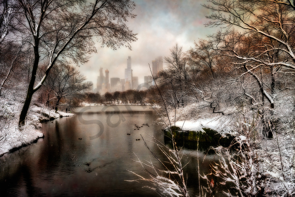 Winter scene in New York's Central Park