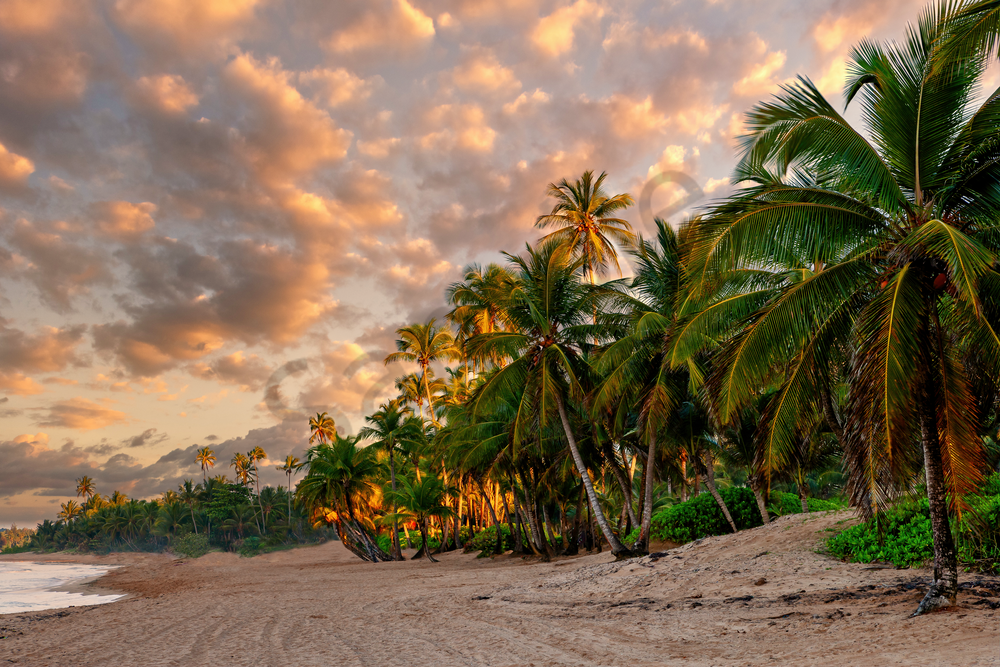 Art Print Cana Gorda Beach Puerto Rico Deserted Beach