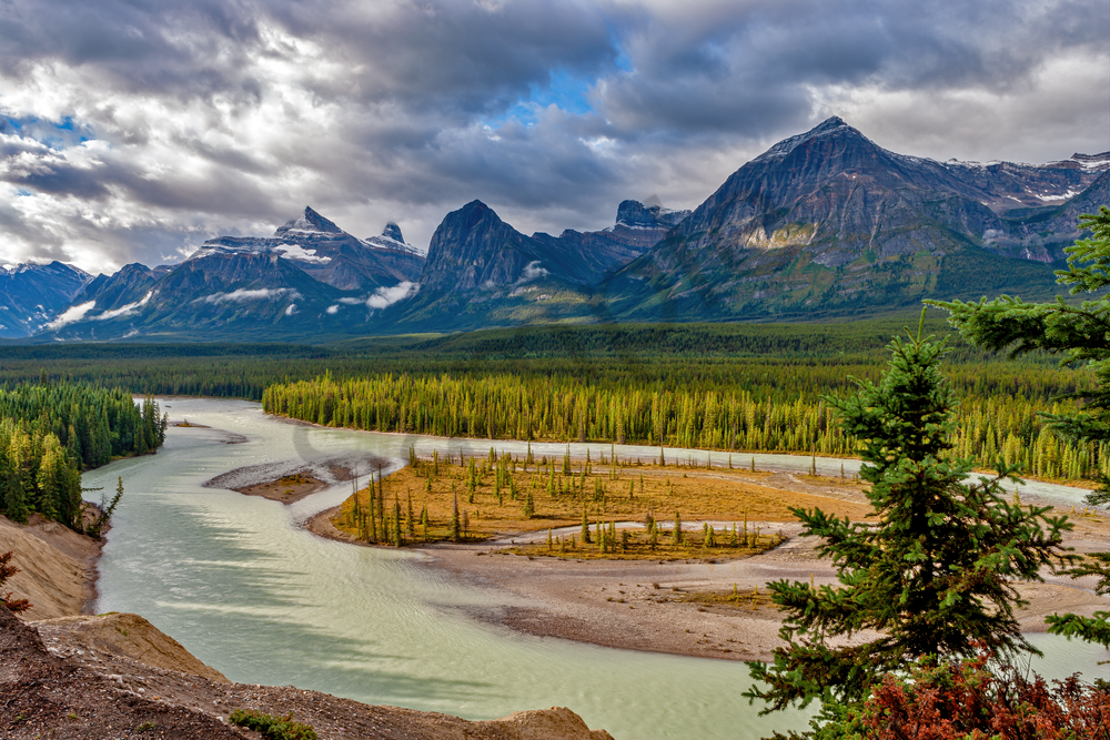 Art Print Banff National Park Alberta Canada River Junction