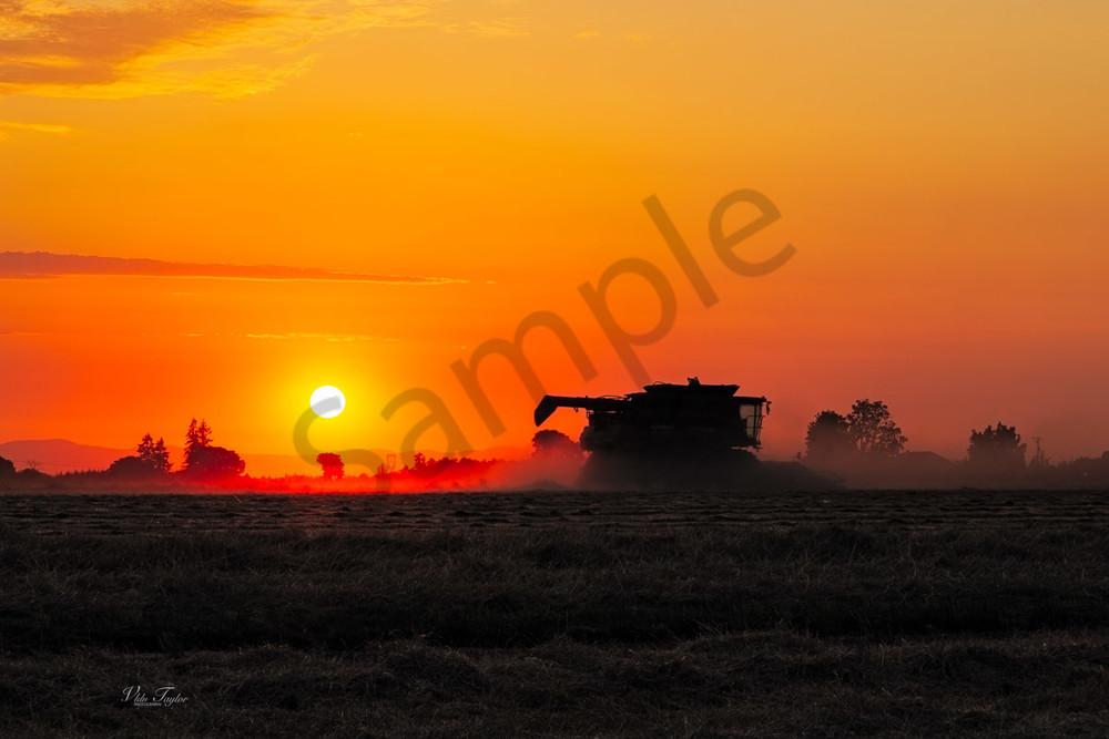 farmland-4