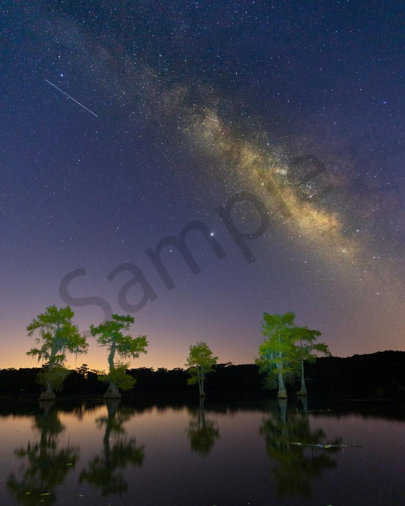 Caddo Lake 4 Photography Art | John Martell Photography
