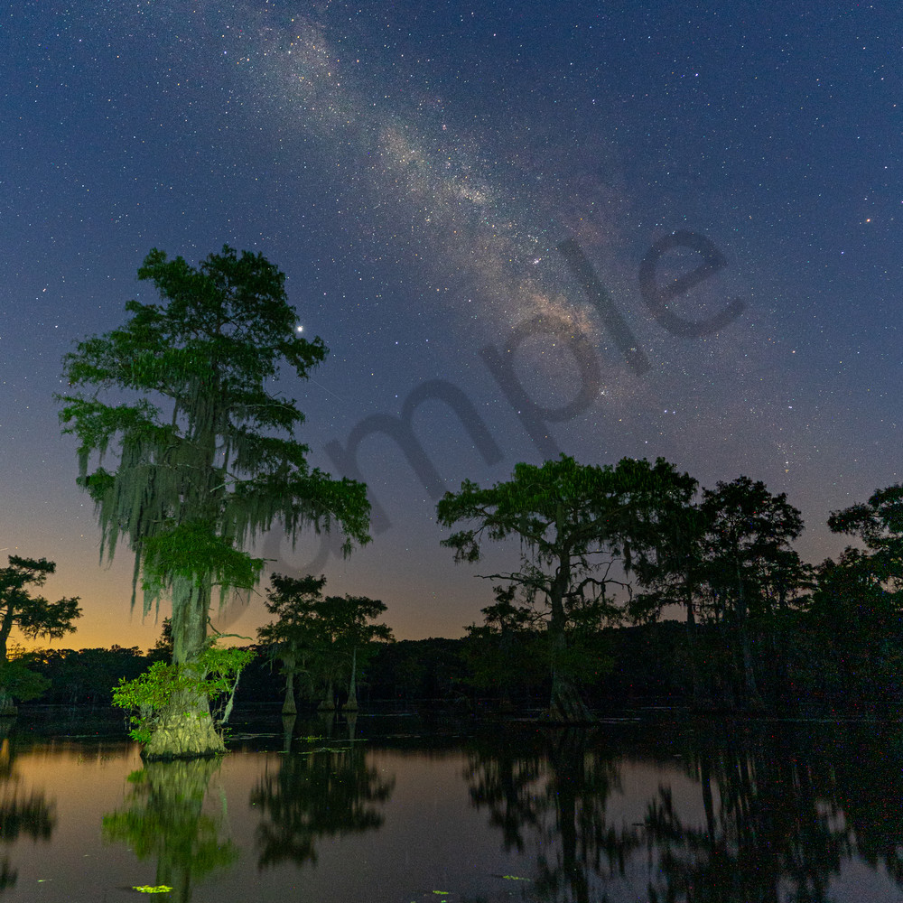 Caddo Lake 2 Photography Art | John Martell Photography