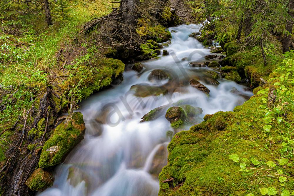 Art Print Banff National Park Alberta Canada Flowing Stream
