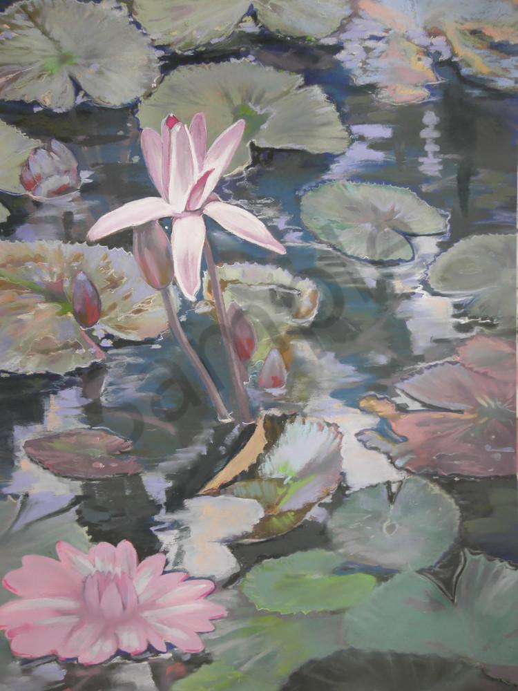 Lily's In The Creek Art | Kelly Bandalos Studios