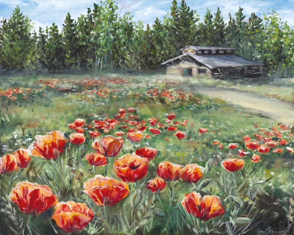 Poppies, Wildflowers, Fine Art Prints, Oil Painting