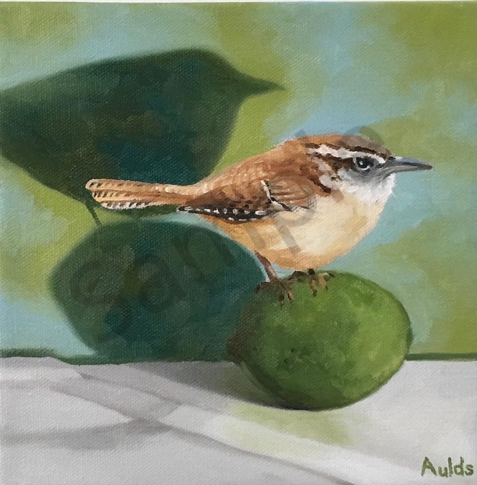 Carolina Wren Art | Suzanne Aulds Studio