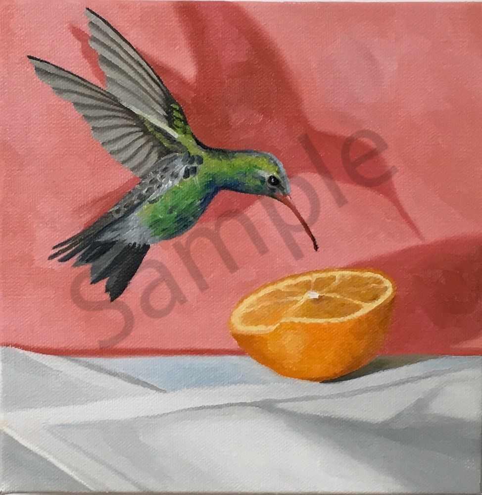Hummingbird Art | Suzanne Aulds Studio