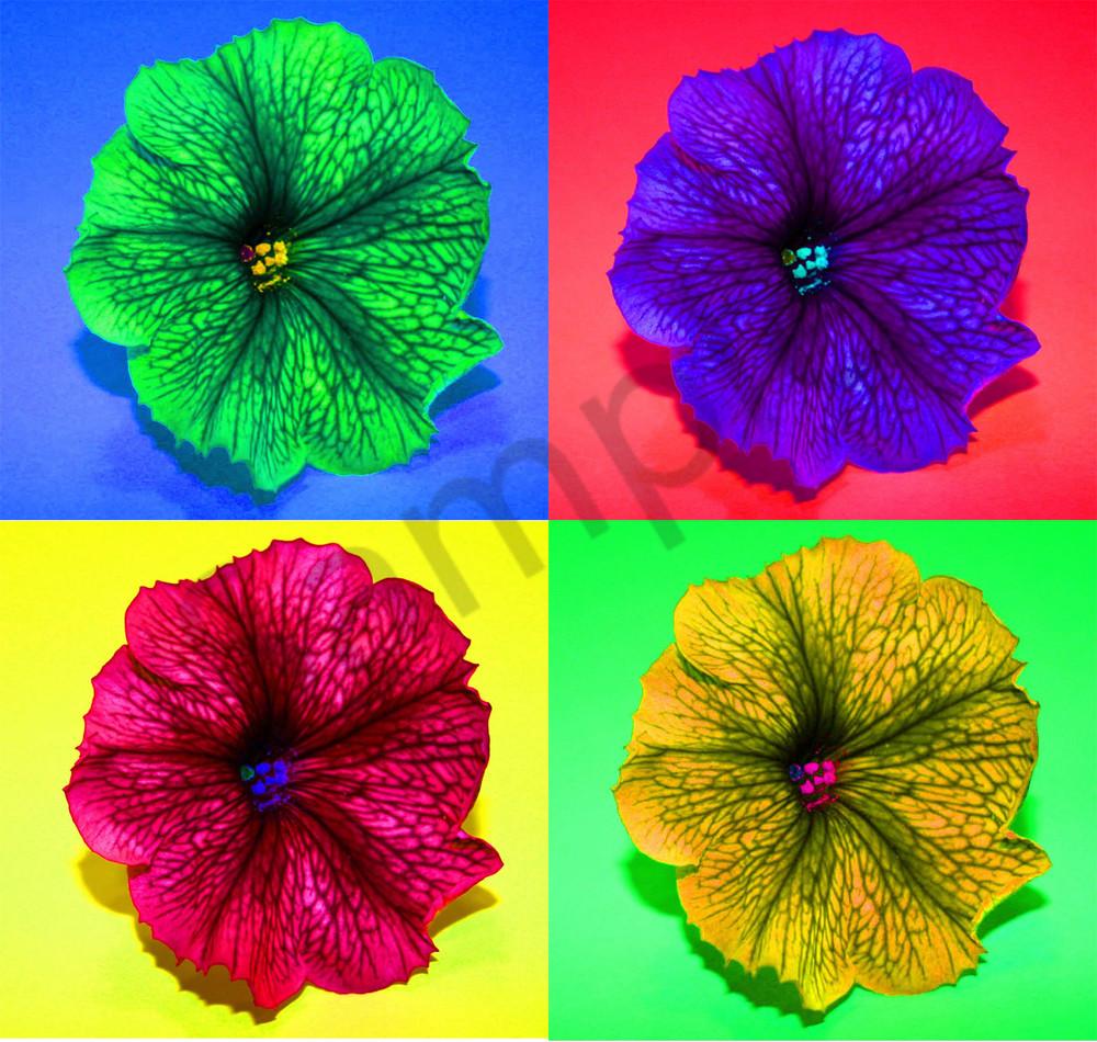 Four Flowers3 Photography Art   CLAUDIA LARRAIN