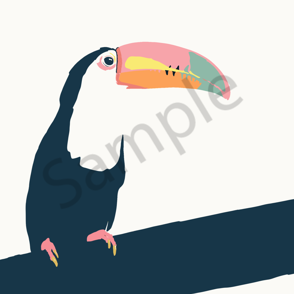 Miami Toucan Art | Davida Fernandez Studio