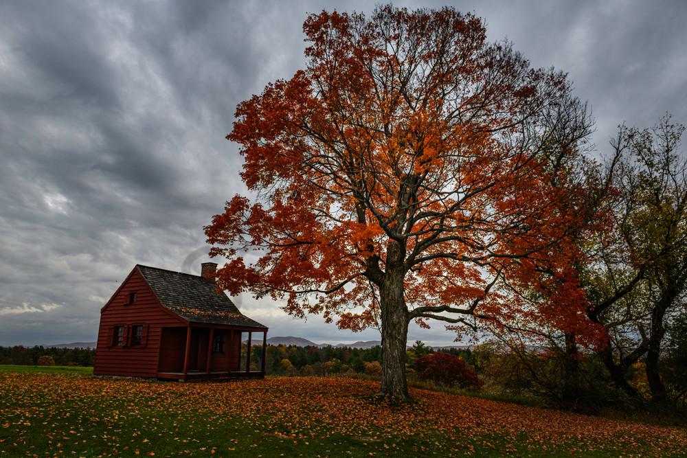 Autumn's Final Dance