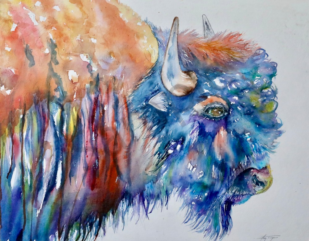 Bud the Bison