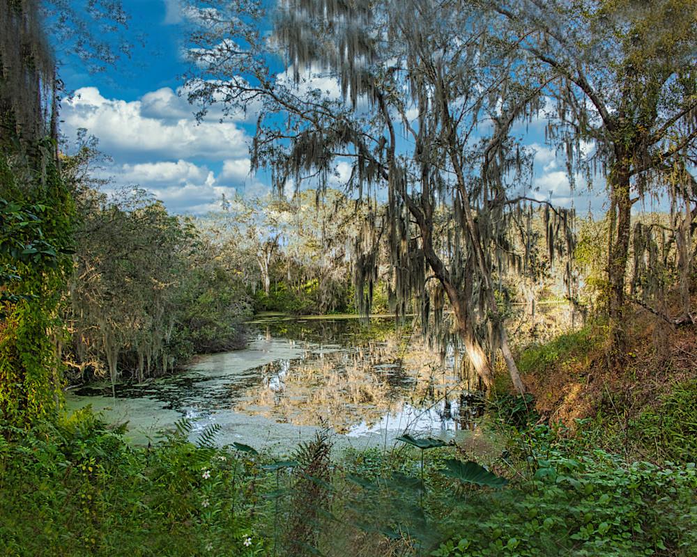 Old Florida Photography Art   It's Your World - Enjoy!