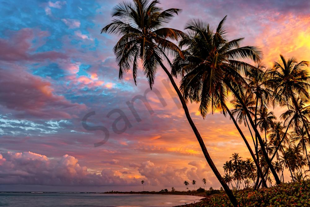 Print Art Puerto Rico Secret Beach