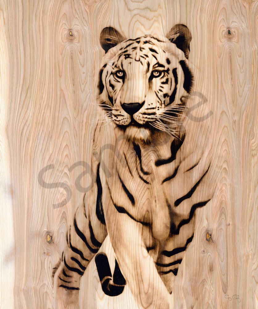 Tiger Art | GeorgeCharriezArt