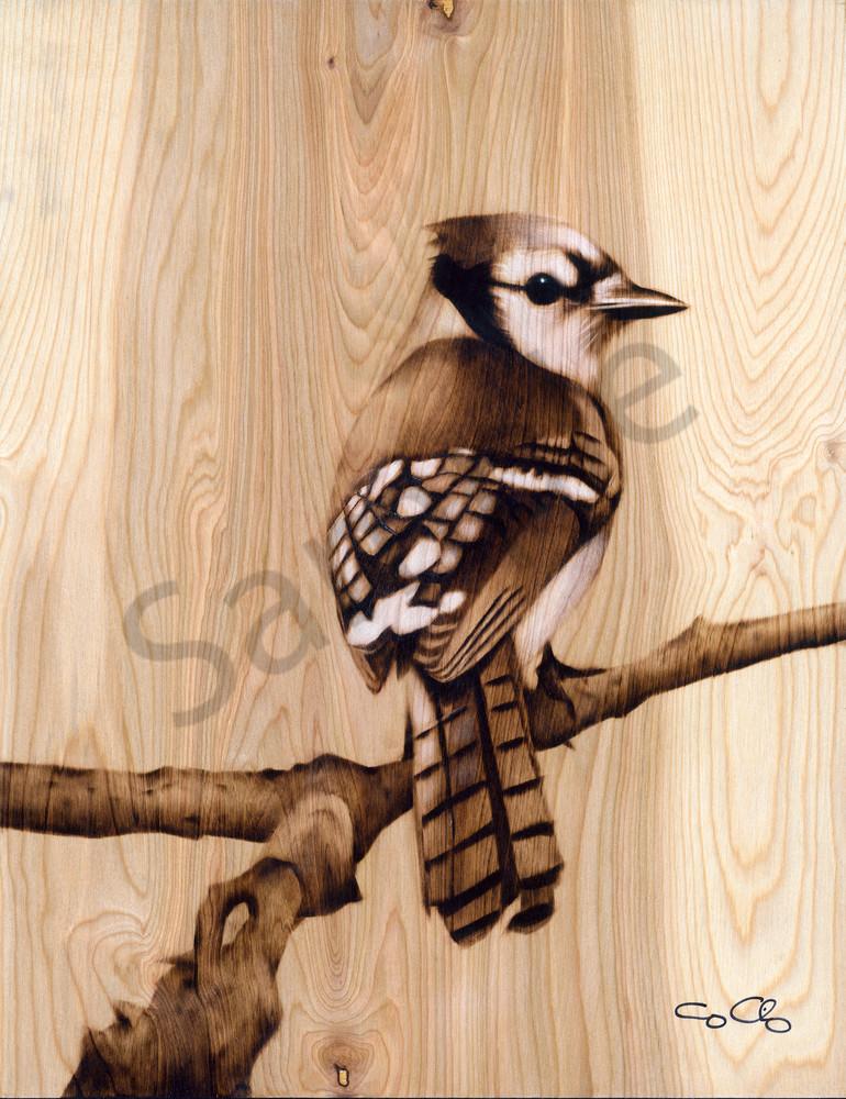 Blue Jay Art | GeorgeCharriezArt