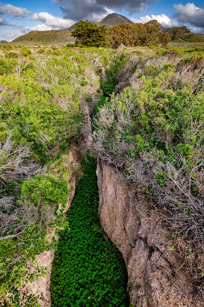 Print Art Montaña de Oro California Green Ravine