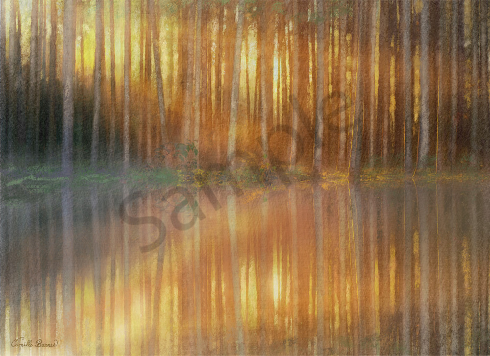 """""""Sunrise Through The Trees"""" by Louisiana Artist Camille Barnes 