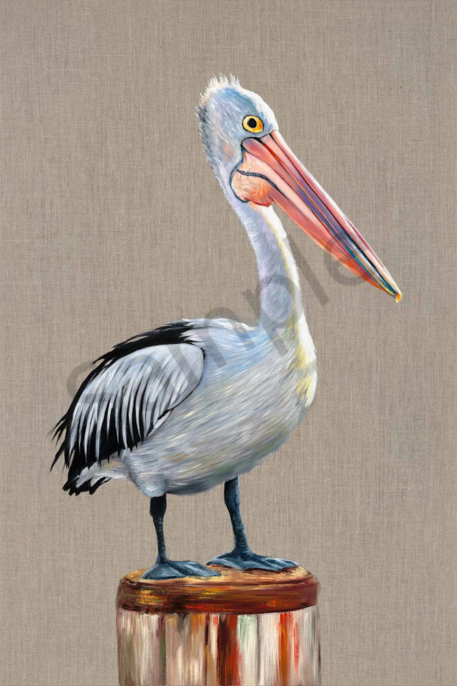 Pelican Look Out