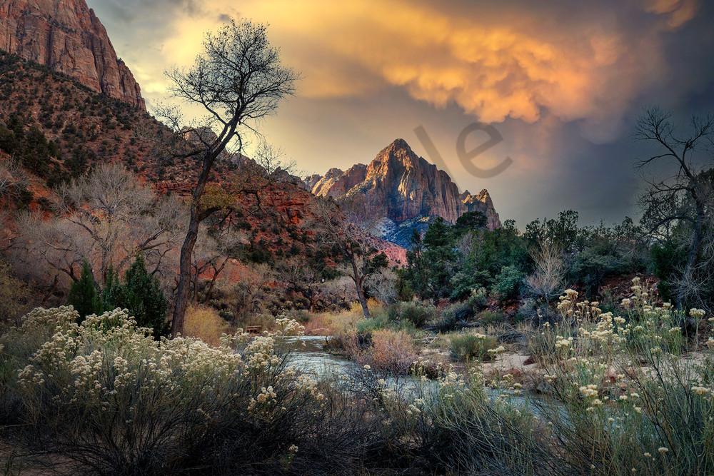 2242 Zion National Park Art   Cunningham Gallery