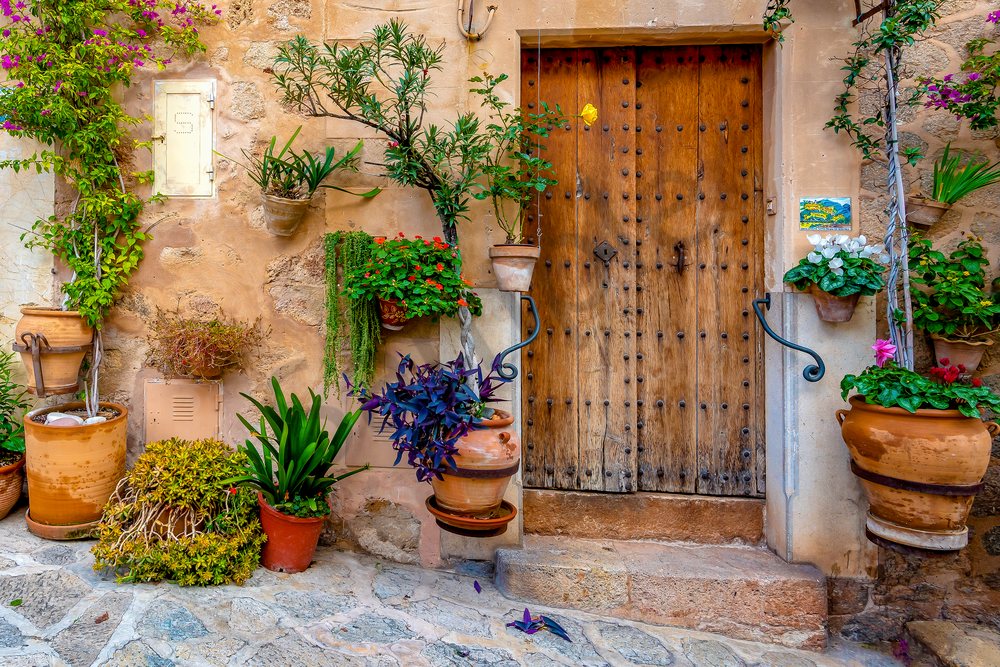 Art Print Palma Mallorca Spain Brown Door and Planters