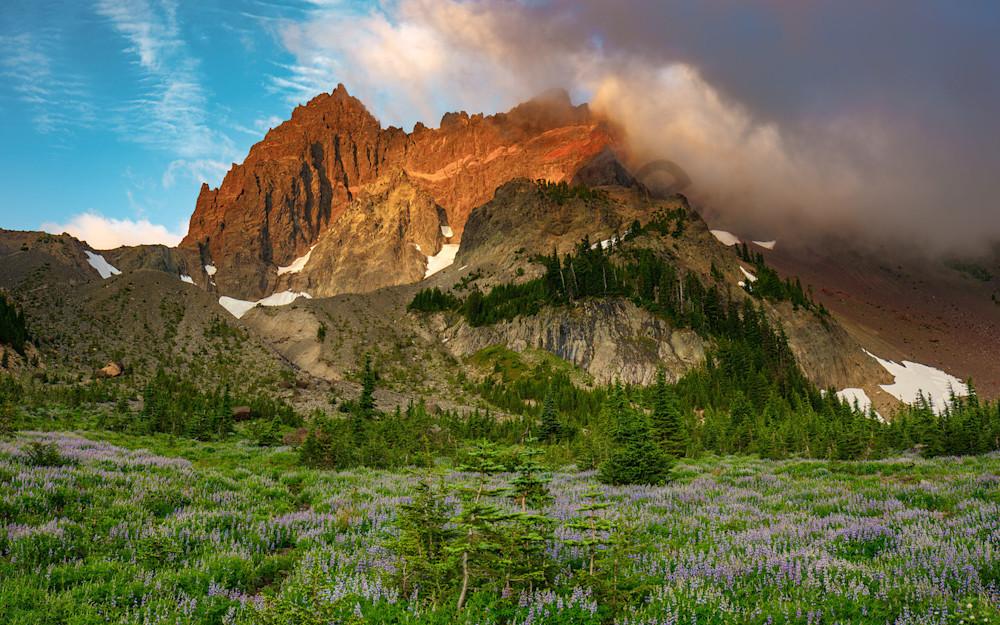Jacks Meadow Photography Art | Scott Cordner Photography