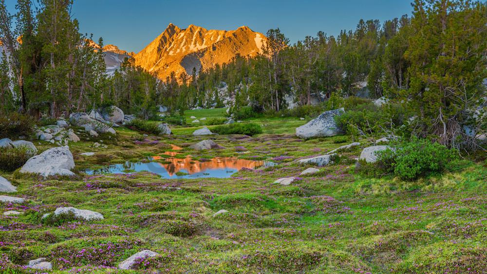 A Sierra Meadow Photography Art   Scott Cordner Photography