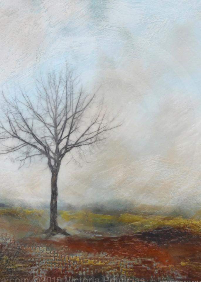 Stalwart Hero - Tree Artwork - Wall Art on Canvas