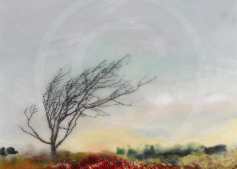 Disrobed Dancer - Tree Artwork - Artwork and Prints