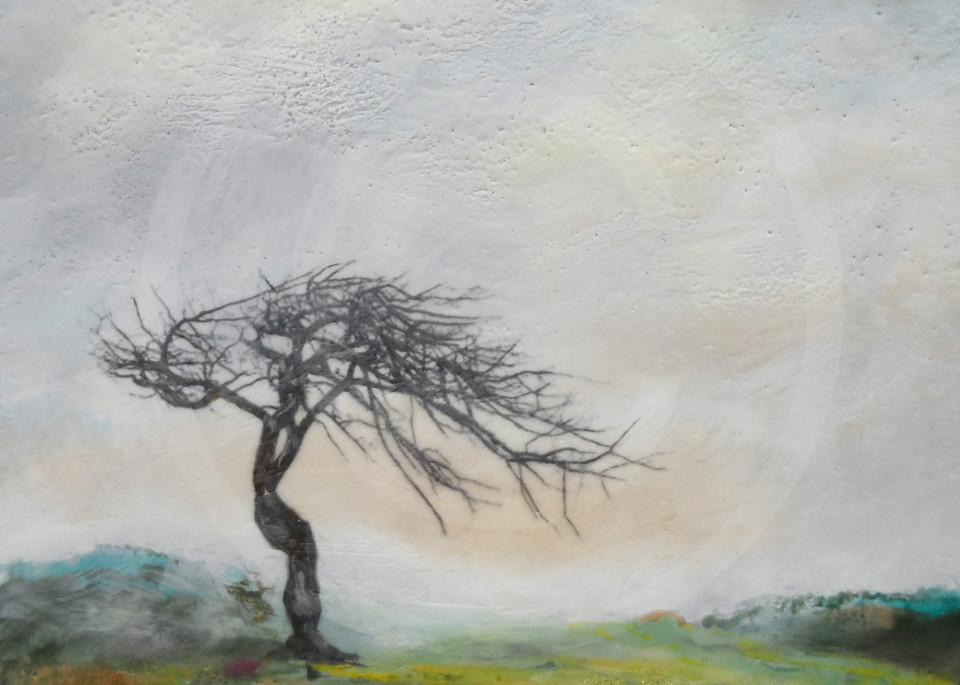 Slumbering Canopy - Tree Painting - Artwork and Prints