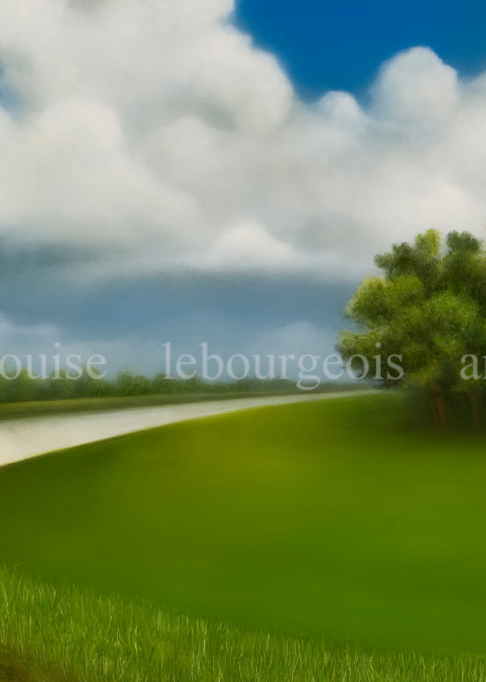 Levee Bend #352 Art   Louise LeBourgeois