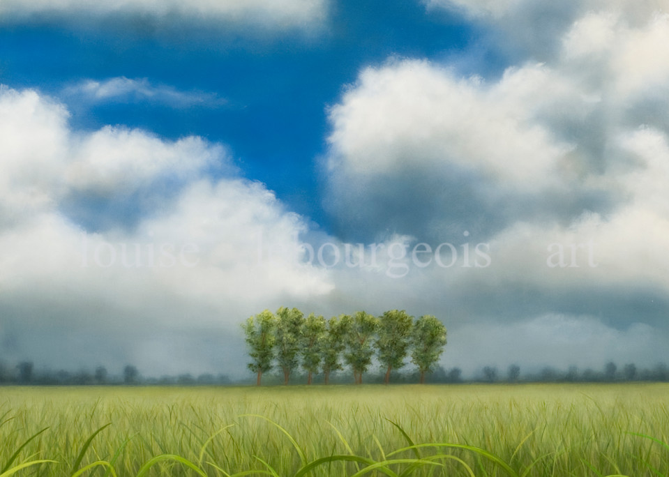 Cane Field #353 Art   Louise LeBourgeois