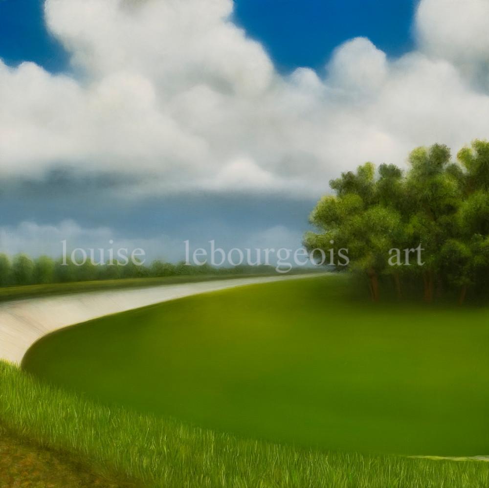 Levee Bend #352