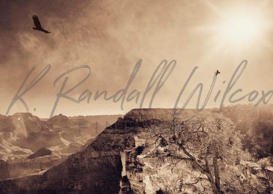 Canyon Flyers Art   K. Randall Wilcox Fine Art