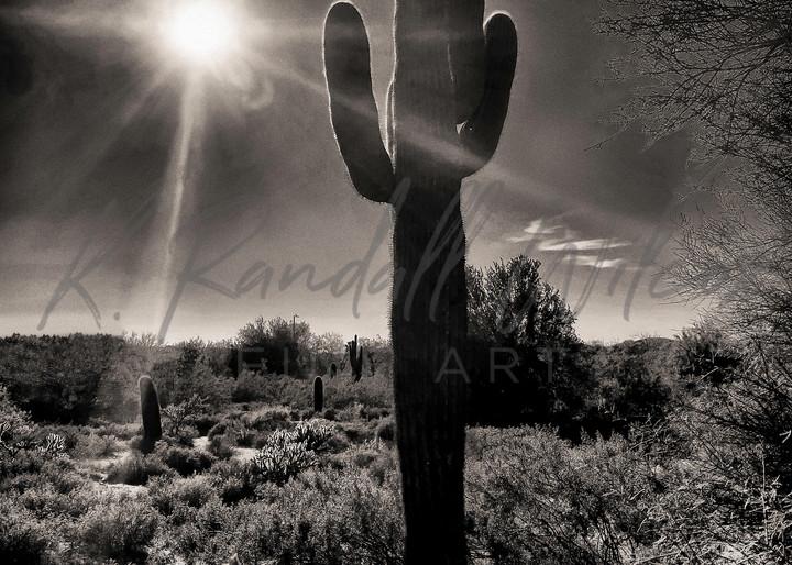 Shine Brightly Art | K. Randall Wilcox Fine Art