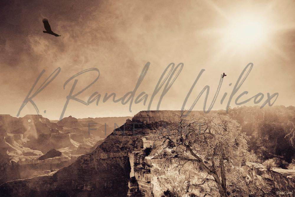 Canyon Flyers Art | K. Randall Wilcox Fine Art