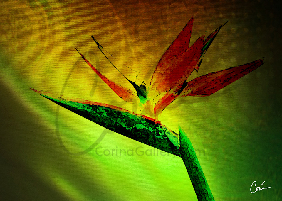 Nice green background with light effects featuring the tropical flower, Bird of Paradise
