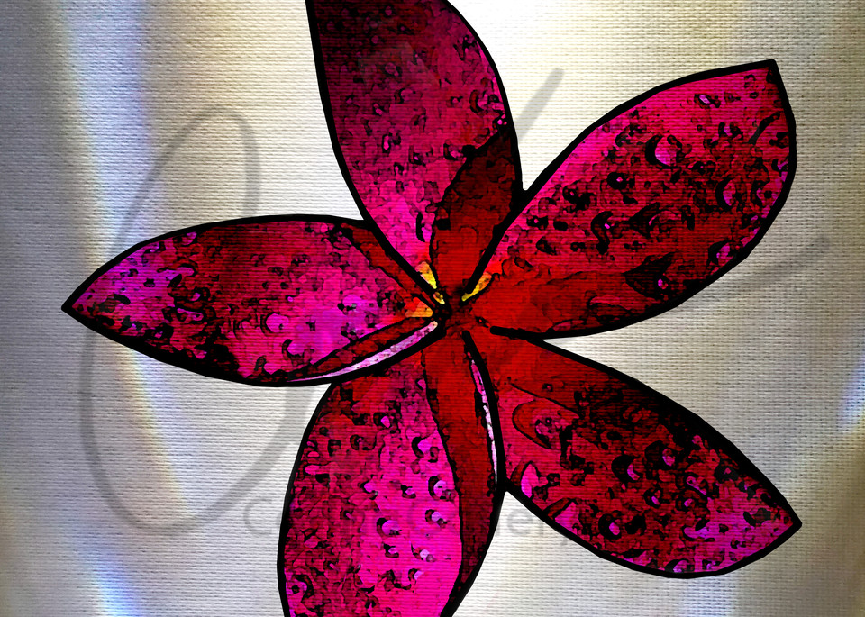 Bright Pink Plumeria over a white background with light effects