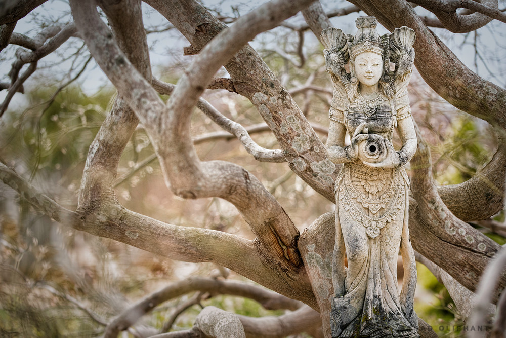 Tara the mother of liberation, meditation practices of Tara, secret teachings about compassion by Tara,