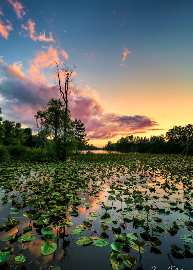 Life In The Bayou Photography Art | Trevor Pottelberg Photography