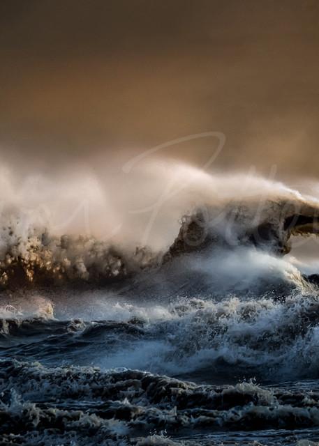 Sea Serpent Photography Art | Trevor Pottelberg Photography