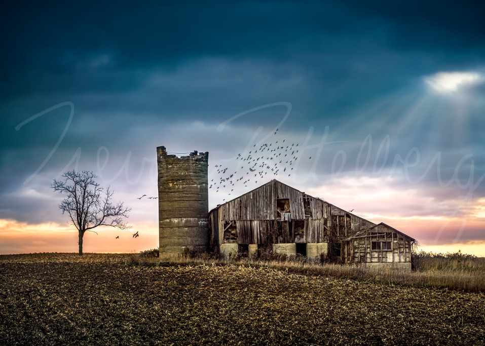 Withstanding Time Photography Art   Trevor Pottelberg Photography