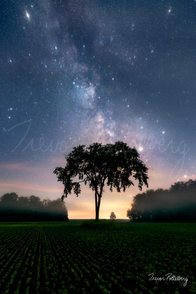 Heaven S Umbrella Photography Art | Trevor Pottelberg Photography