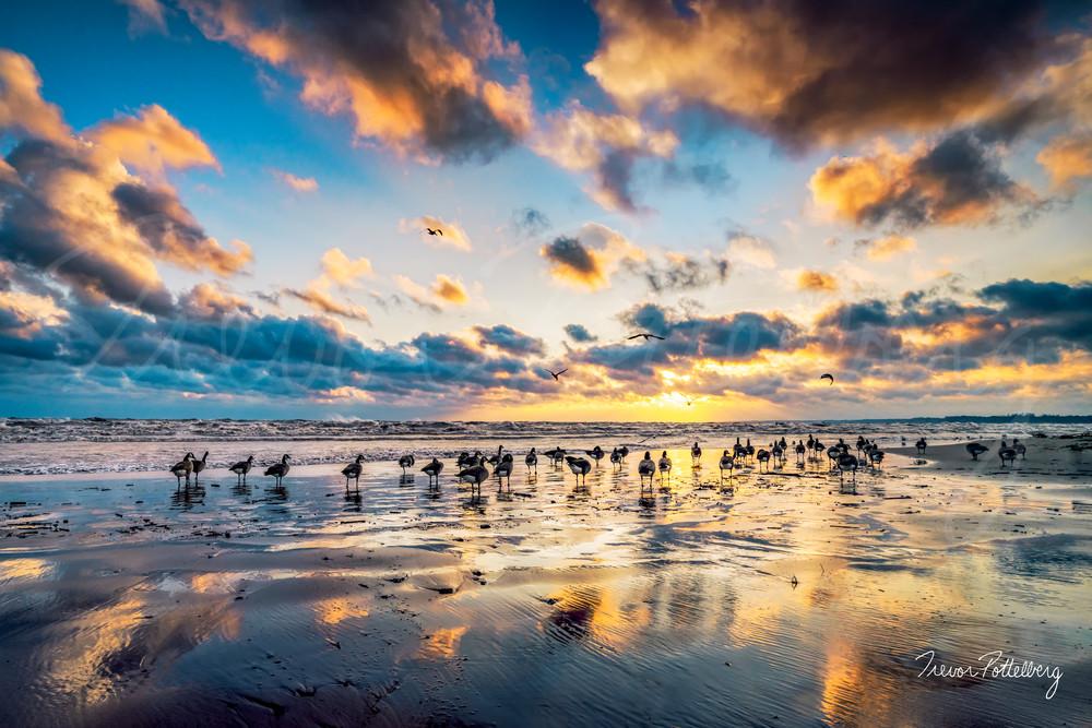 Paradise Shores Photography Art | Trevor Pottelberg Photography