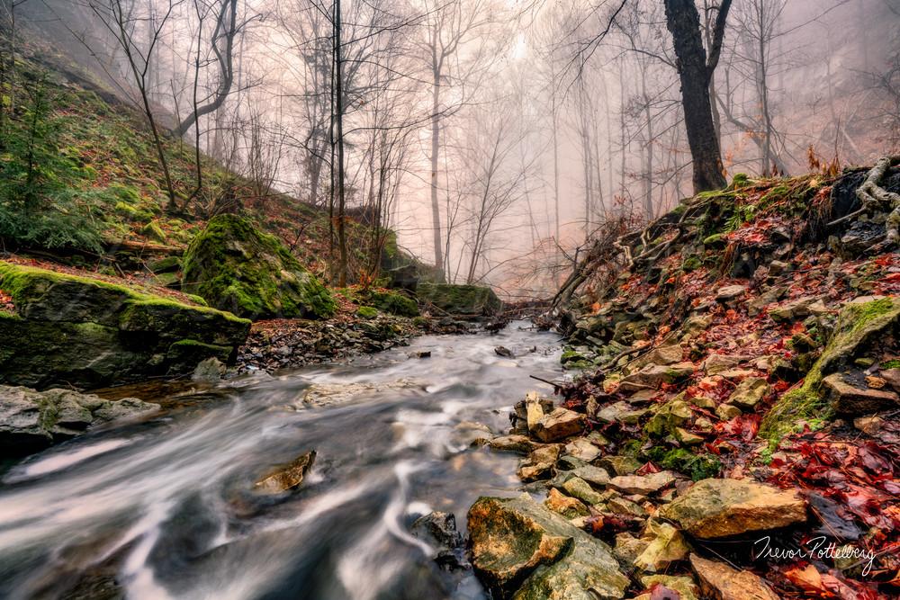 Mountain Brooke Photography Art | Trevor Pottelberg Photography