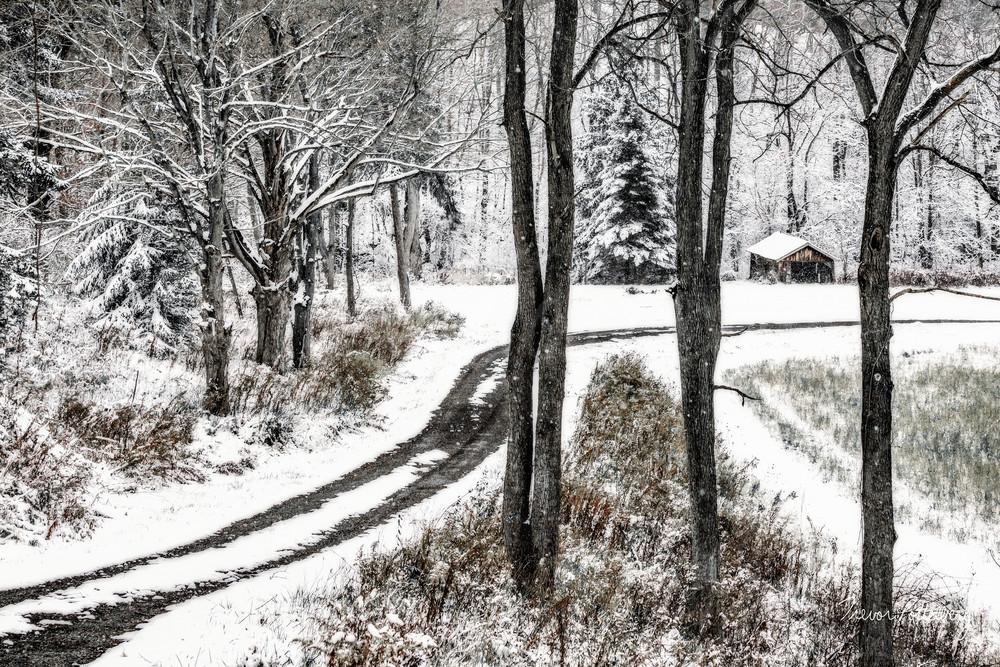 Winter Lane Photography Art   Trevor Pottelberg Photography