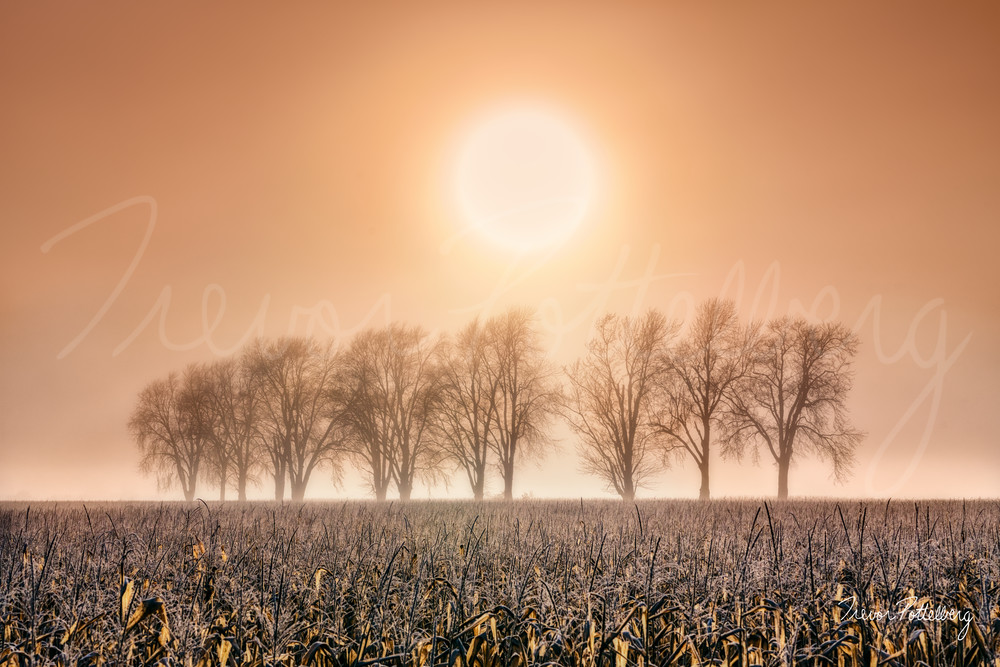 The Circle Of Life Photography Art | Trevor Pottelberg Photography