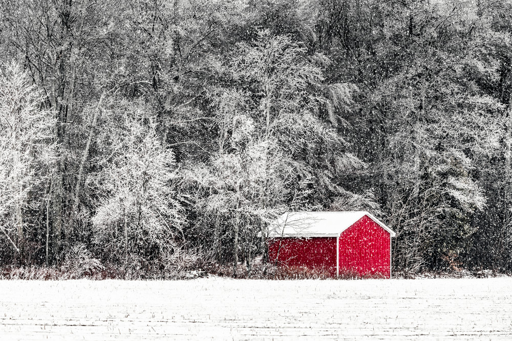 The Little Red Shed Photography Art | Trevor Pottelberg Photography